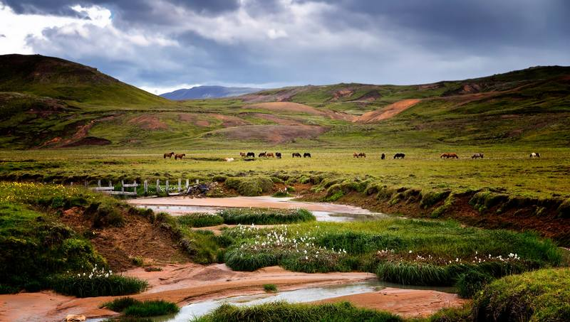 Треккинг в Исландии - пейзаж острова